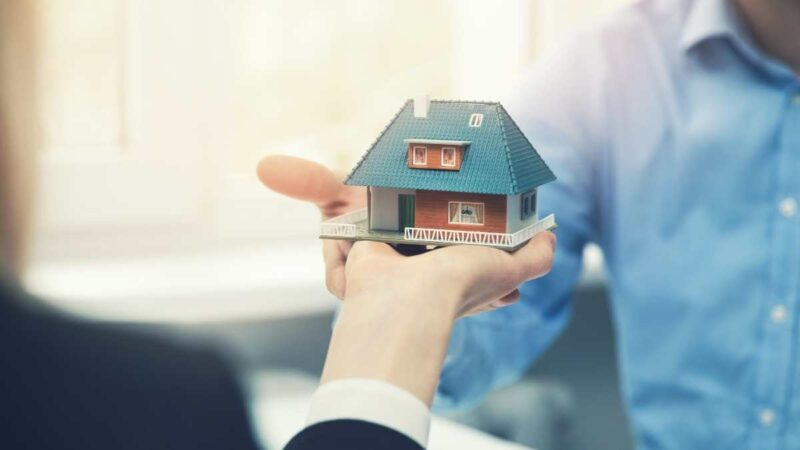 Trusted real estate agent in Minto